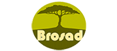 Brosad Travel & Satsa